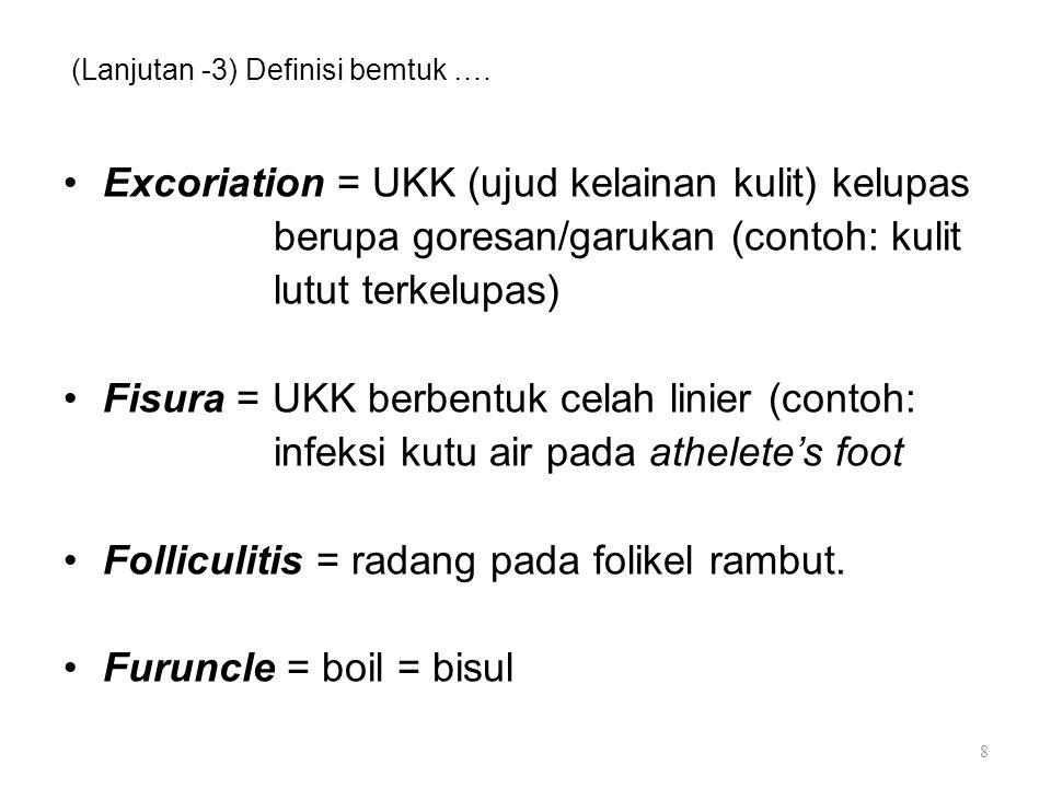 (Lanjutan -3) Definisi bemtuk …. Excoriation = UKK (ujud kelainan kulit) kelupas berupa goresan/garukan (contoh: kulit lutut terkelupas) Fisura = UKK
