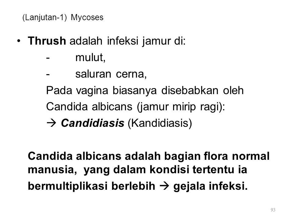 (Lanjutan-1) Mycoses Thrush adalah infeksi jamur di: -mulut, -saluran cerna, Pada vagina biasanya disebabkan oleh Candida albicans (jamur mirip ragi):