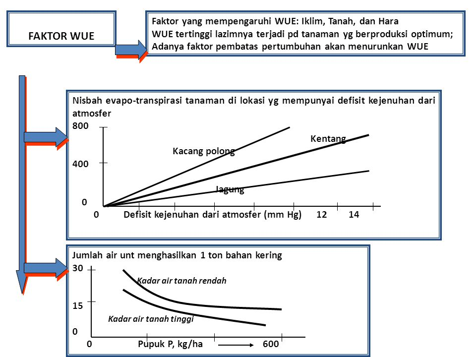 FAKTOR WUE Faktor yang mempengaruhi WUE: Iklim, Tanah, dan Hara WUE tertinggi lazimnya terjadi pd tanaman yg berproduksi optimum; Adanya faktor pembat