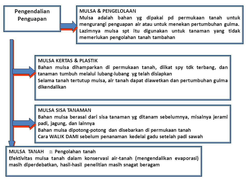 Pengendalian Penguapan MULSA & PENGELOLAAN Mulsa adalah bahan yg dipakai pd permukaan tanah untuk mengurangi penguapan air atau untuk menekan pertumbuhan gulma.