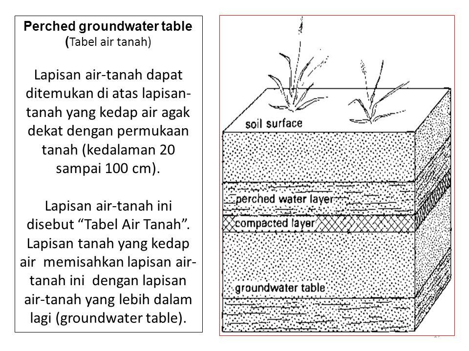 17 Perched groundwater table ( Tabel air tanah) Lapisan air-tanah dapat ditemukan di atas lapisan- tanah yang kedap air agak dekat dengan permukaan tanah (kedalaman 20 sampai 100 cm).