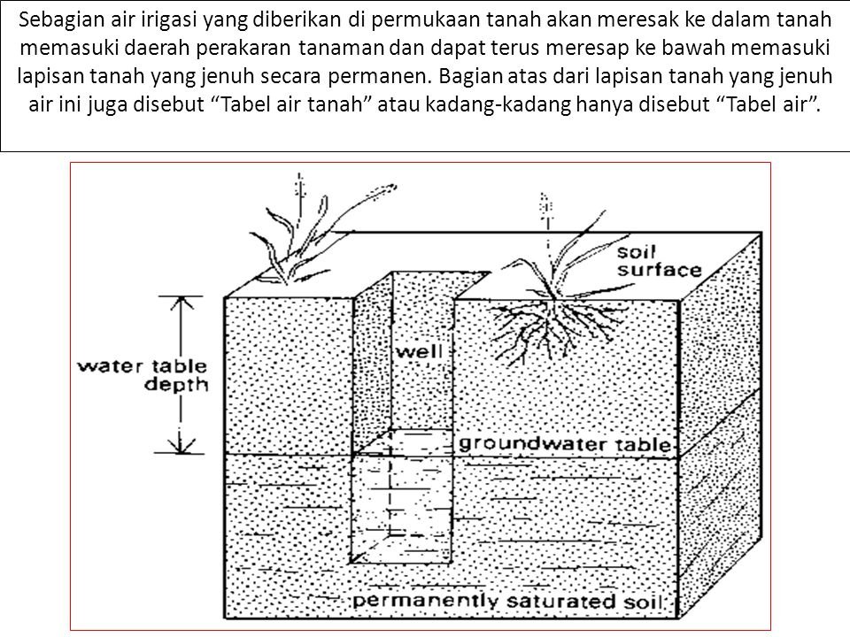Sebagian air irigasi yang diberikan di permukaan tanah akan meresak ke dalam tanah memasuki daerah perakaran tanaman dan dapat terus meresap ke bawah