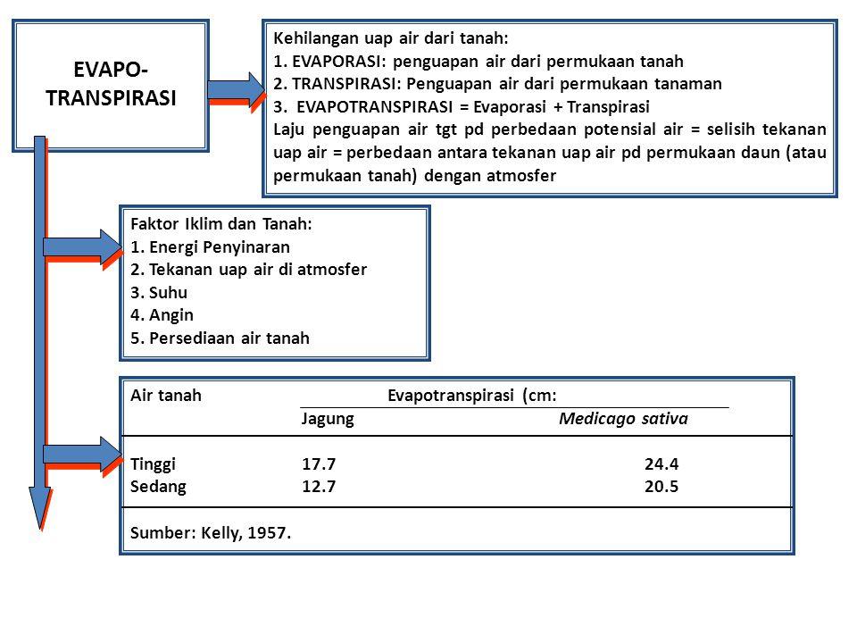 EVAPO- TRANSPIRASI Kehilangan uap air dari tanah: 1. EVAPORASI: penguapan air dari permukaan tanah 2. TRANSPIRASI: Penguapan air dari permukaan tanama