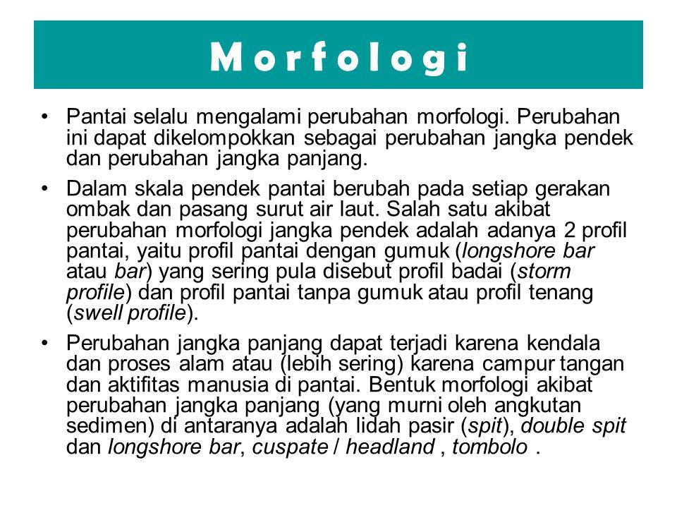M o r f o l o g i Pantai selalu mengalami perubahan morfologi. Perubahan ini dapat dikelompokkan sebagai perubahan jangka pendek dan perubahan jangka