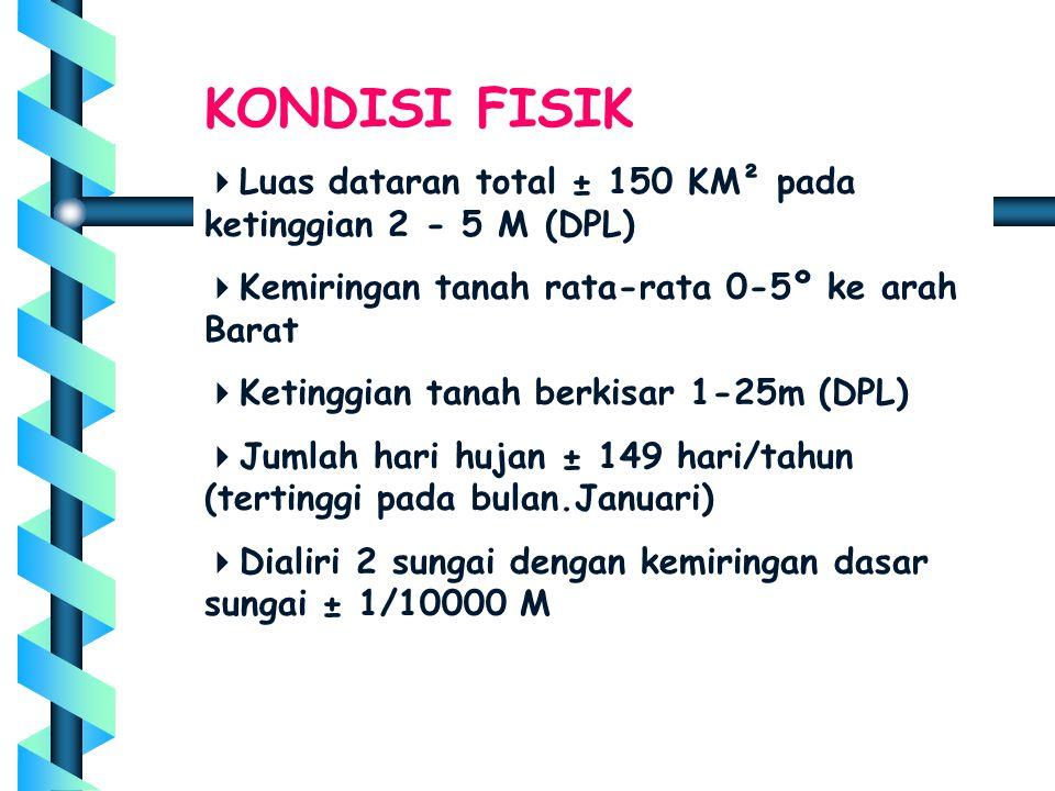 KONDISI FISIK  Luas dataran total ± 150 KM² pada ketinggian 2 - 5 M (DPL)  Kemiringan tanah rata-rata 0-5º ke arah Barat  Ketinggian tanah berkisar