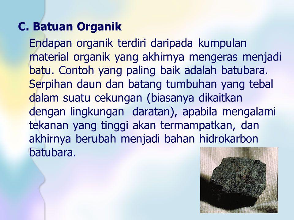 C. Batuan Organik Endapan organik terdiri daripada kumpulan material organik yang akhirnya mengeras menjadi batu. Contoh yang paling baik adalah batub