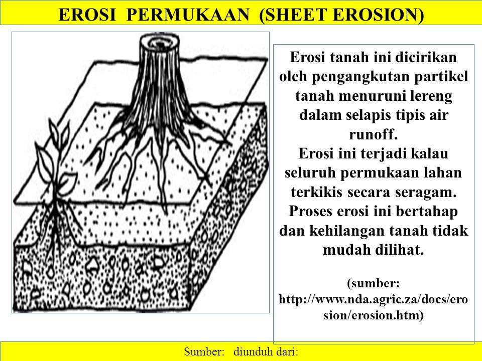 Sumber: diunduh dari: Erosi tanah ini dicirikan oleh pengangkutan partikel tanah menuruni lereng dalam selapis tipis air runoff. Erosi ini terjadi kal