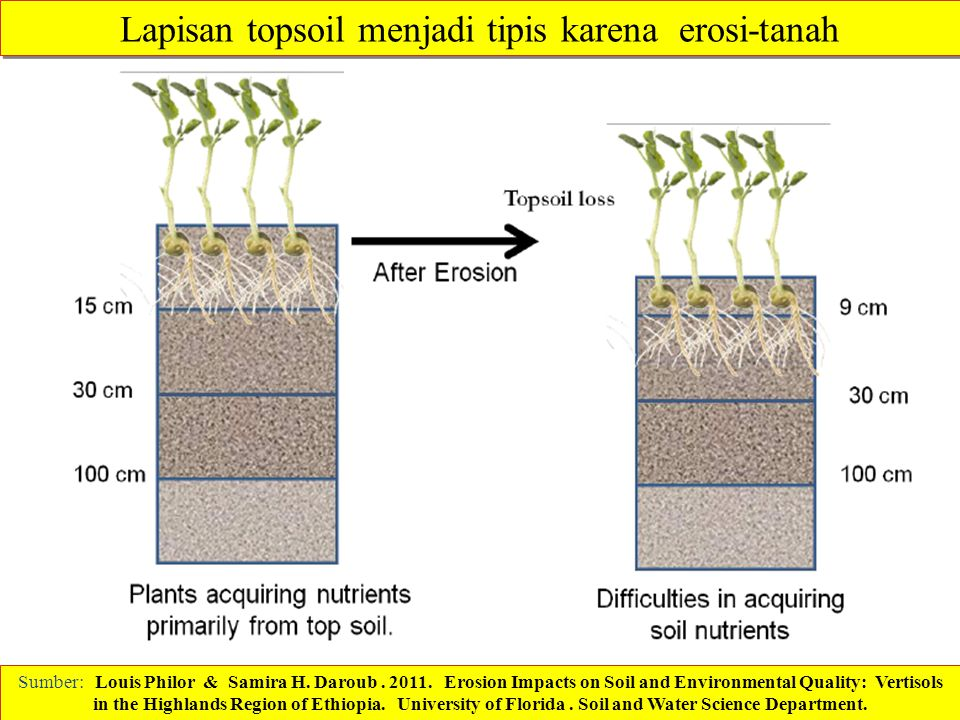 Sumber: Louis Philor & Samira H. Daroub. 2011. Erosion Impacts on Soil and Environmental Quality: Vertisols in the Highlands Region of Ethiopia. Unive
