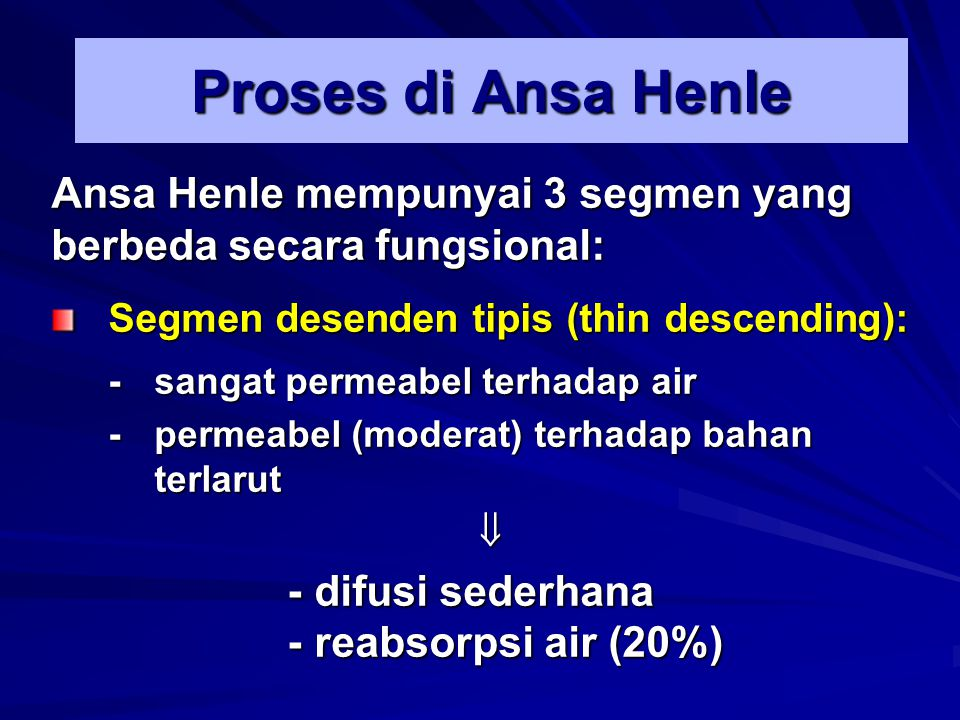 Proses di Ansa Henle Ansa Henle mempunyai 3 segmen yang berbeda secara fungsional: Segmen desenden tipis (thin descending): -sangat permeabel terhadap
