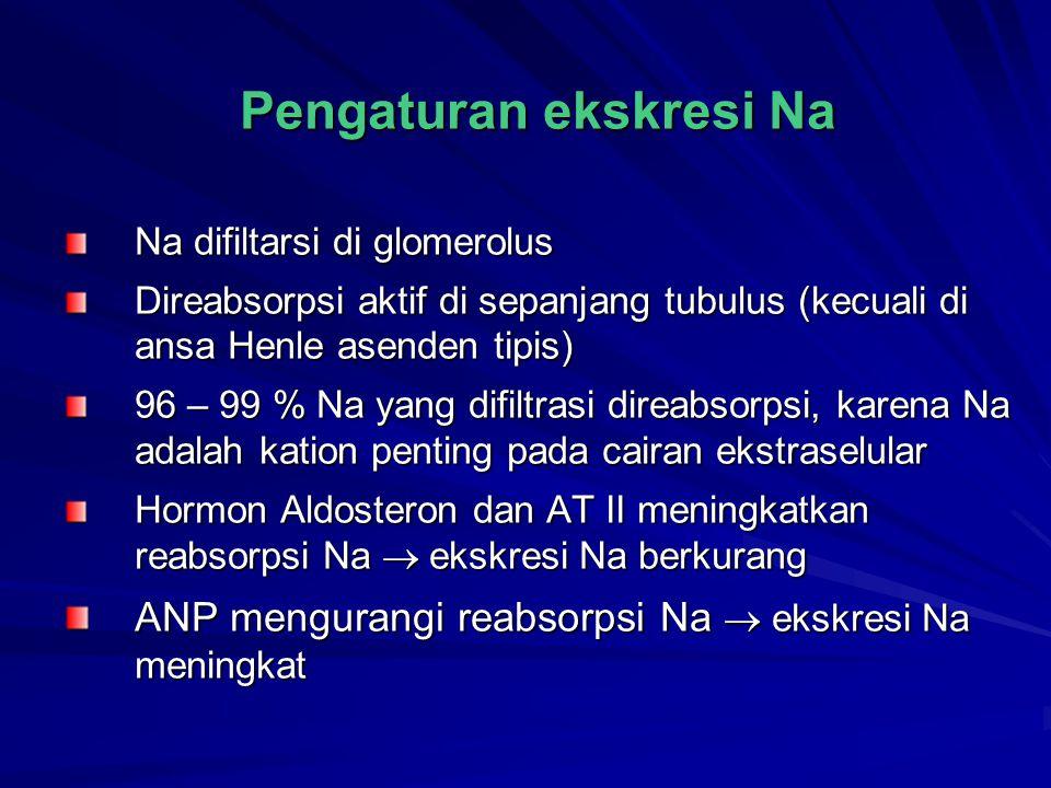 Pengaturan ekskresi Na Na difiltarsi di glomerolus Direabsorpsi aktif di sepanjang tubulus (kecuali di ansa Henle asenden tipis) 96 – 99 % Na yang dif