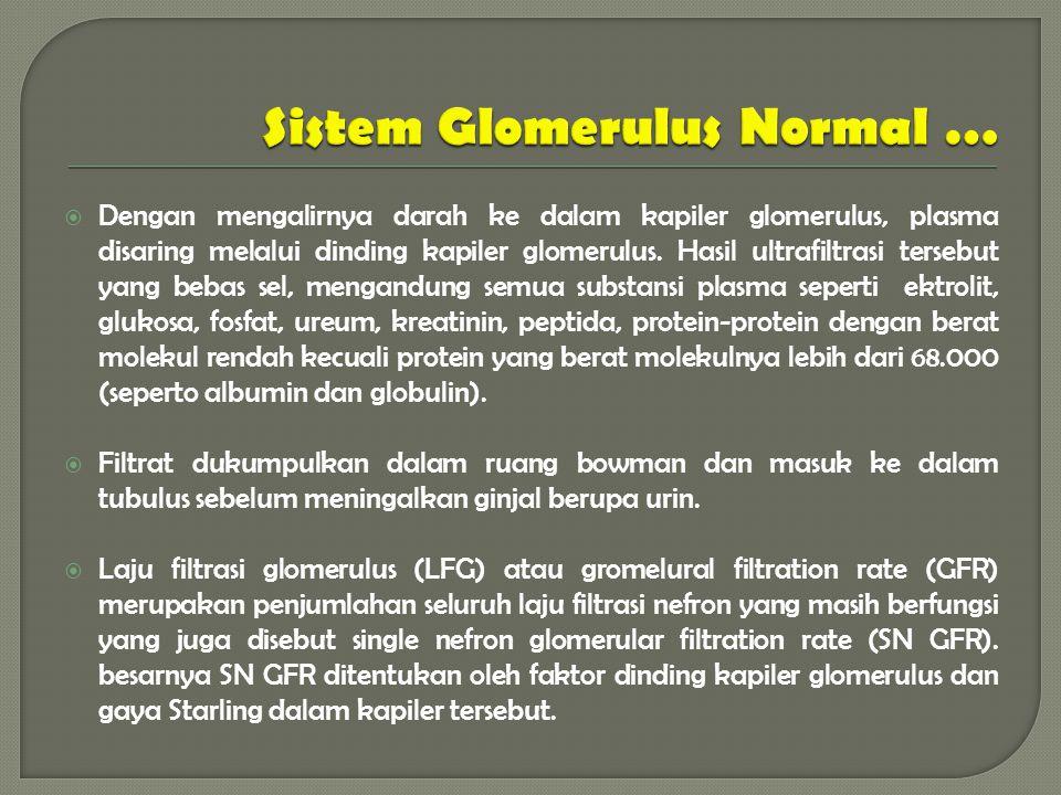  Dengan mengalirnya darah ke dalam kapiler glomerulus, plasma disaring melalui dinding kapiler glomerulus.