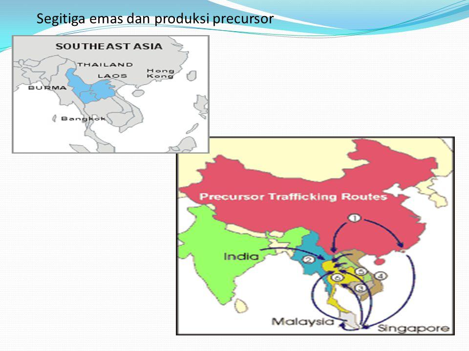 Segitiga emas dan produksi precursor