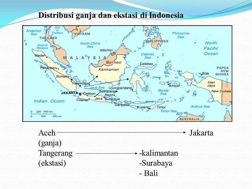 Distribusi ganja dan ekstasi di Indonesia AcehJakarta (ganja) Tangerang-kalimantan (ekstasi)-Surabaya - Bali