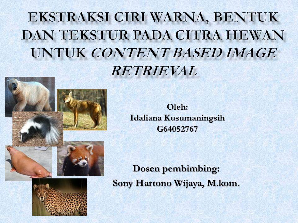 Oleh: Idaliana Kusumaningsih G64052767 Dosen pembimbing: Sony Hartono Wijaya, M.kom.