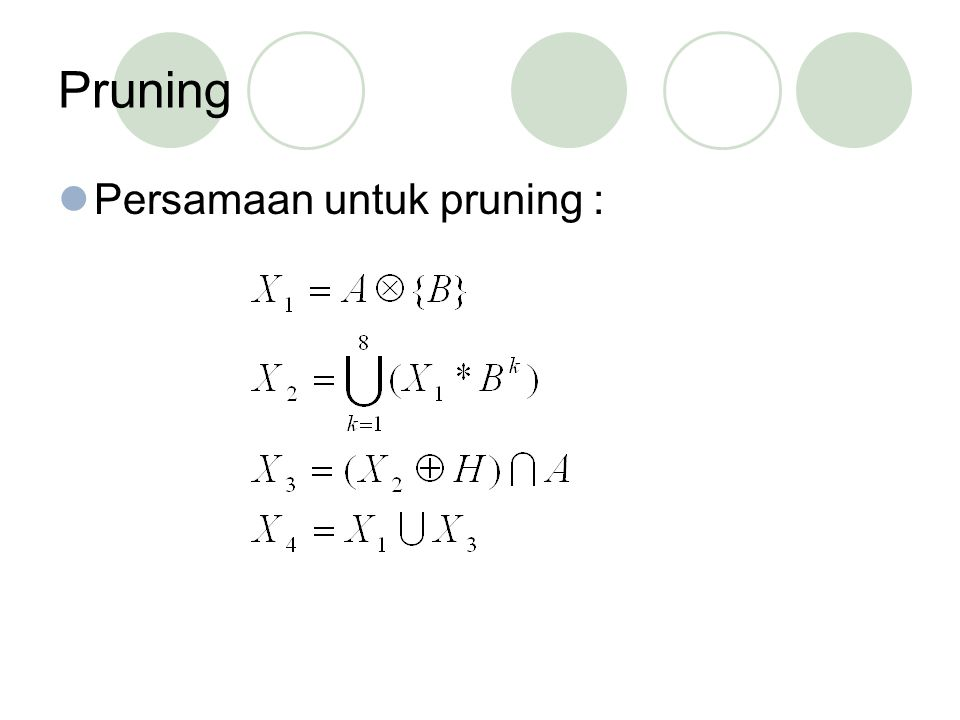 Persamaan untuk pruning :