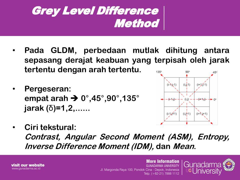 Pada GLDM, perbedaan mutlak dihitung antara sepasang derajat keabuan yang terpisah oleh jarak tertentu dengan arah tertentu.
