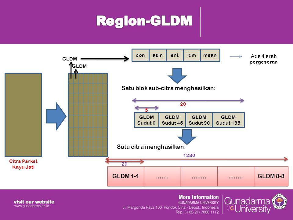 GLDM con GLDM 1-1...............