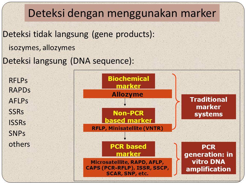 Deteksi dengan menggunakan marker isozymes, allozymes Deteksi tidak langsung (gene products): Deteksi langsung (DNA sequence): SSRs RAPDs AFLPs ISSRs SNPs others RFLPs Biochemical marker Allozyme Non-PCR based marker RFLP, Minisatellite (VNTR) PCR based marker Microsatellite, RAPD, AFLP, CAPS (PCR-RFLP), ISSR, SSCP, SCAR, SNP, etc.