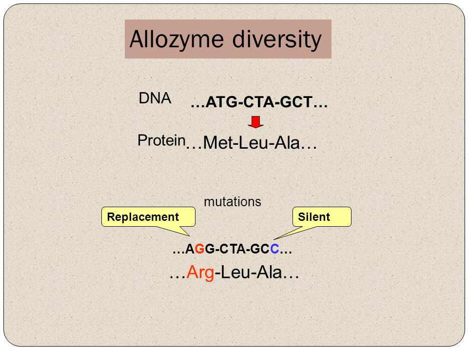 Allozyme diversity …ATG-CTA-GCT… DNA …Met-Leu-Ala… Protein …AGG-CTA-GCC… …Arg-Leu-Ala… Silent Replacement mutations