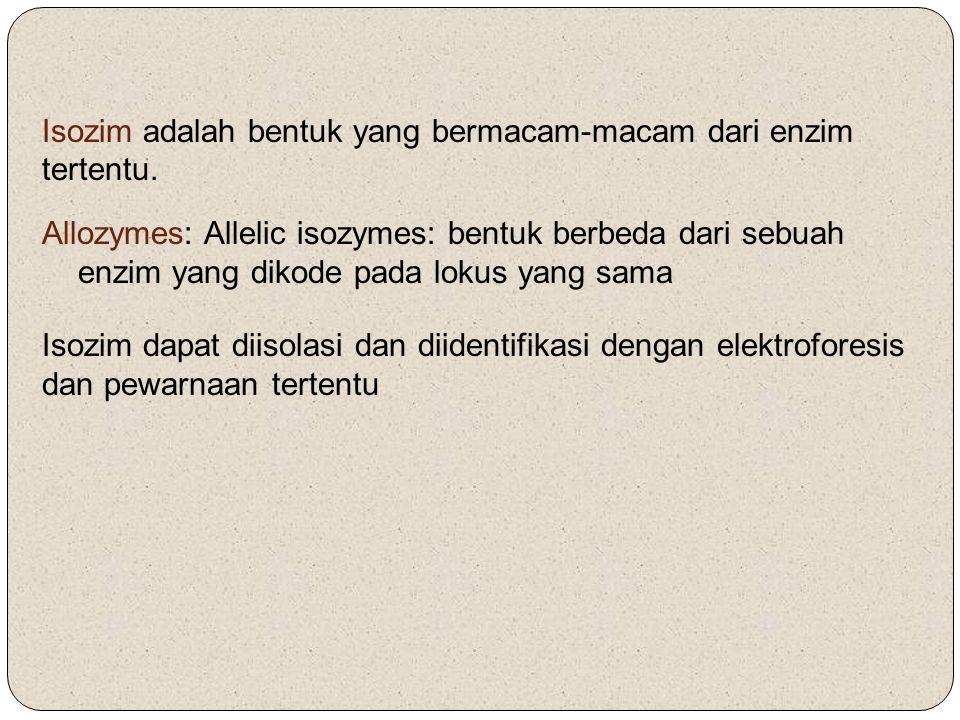 Allozymes: Allelic isozymes: bentuk berbeda dari sebuah enzim yang dikode pada lokus yang sama Isozim adalah bentuk yang bermacam-macam dari enzim ter