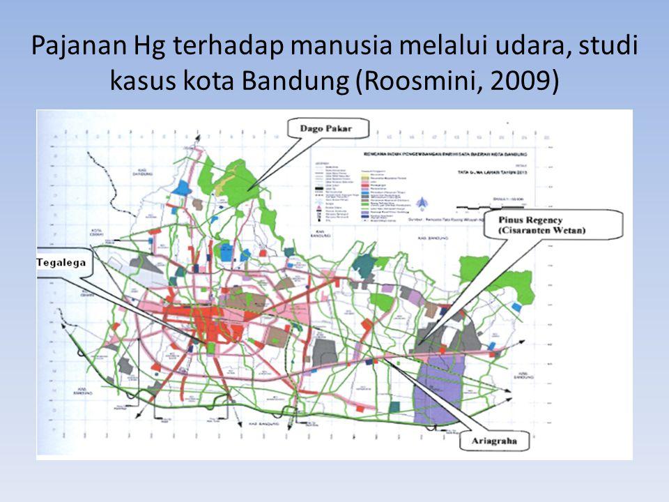Pajanan Hg terhadap manusia melalui udara, studi kasus kota Bandung (Roosmini, 2009)