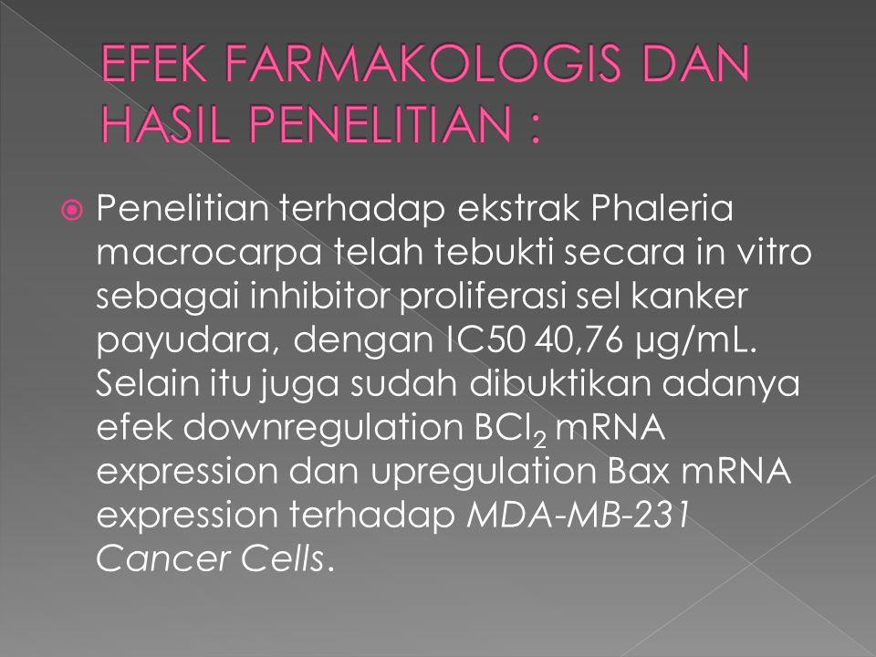  Penelitian terhadap ekstrak Phaleria macrocarpa telah tebukti secara in vitro sebagai inhibitor proliferasi sel kanker payudara, dengan IC50 40,76 µ