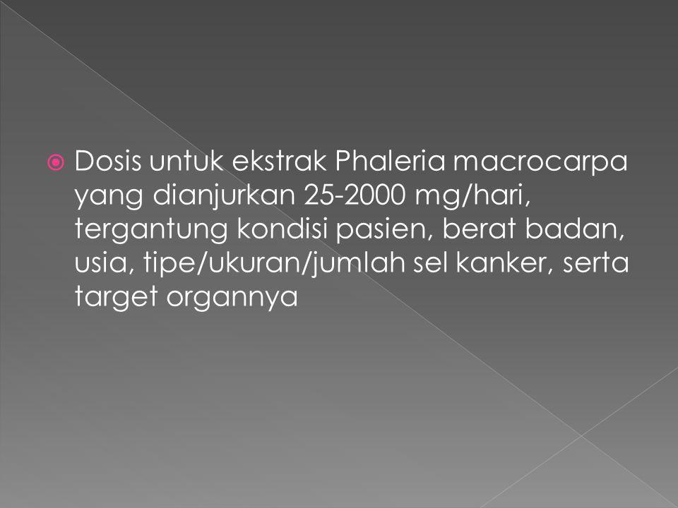  Dosis untuk ekstrak Phaleria macrocarpa yang dianjurkan 25-2000 mg/hari, tergantung kondisi pasien, berat badan, usia, tipe/ukuran/jumlah sel kanker