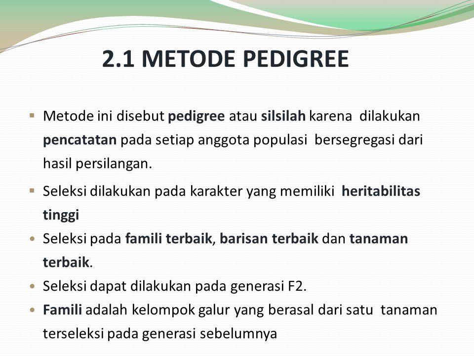 2.1 METODE PEDIGREE  Metode ini disebut pedigree atau silsilah karena dilakukan pencatatan pada setiap anggota populasi bersegregasi dari hasil persi