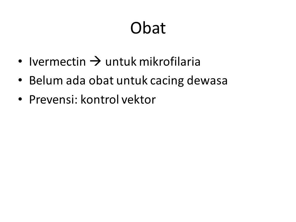 Obat Ivermectin  untuk mikrofilaria Belum ada obat untuk cacing dewasa Prevensi: kontrol vektor