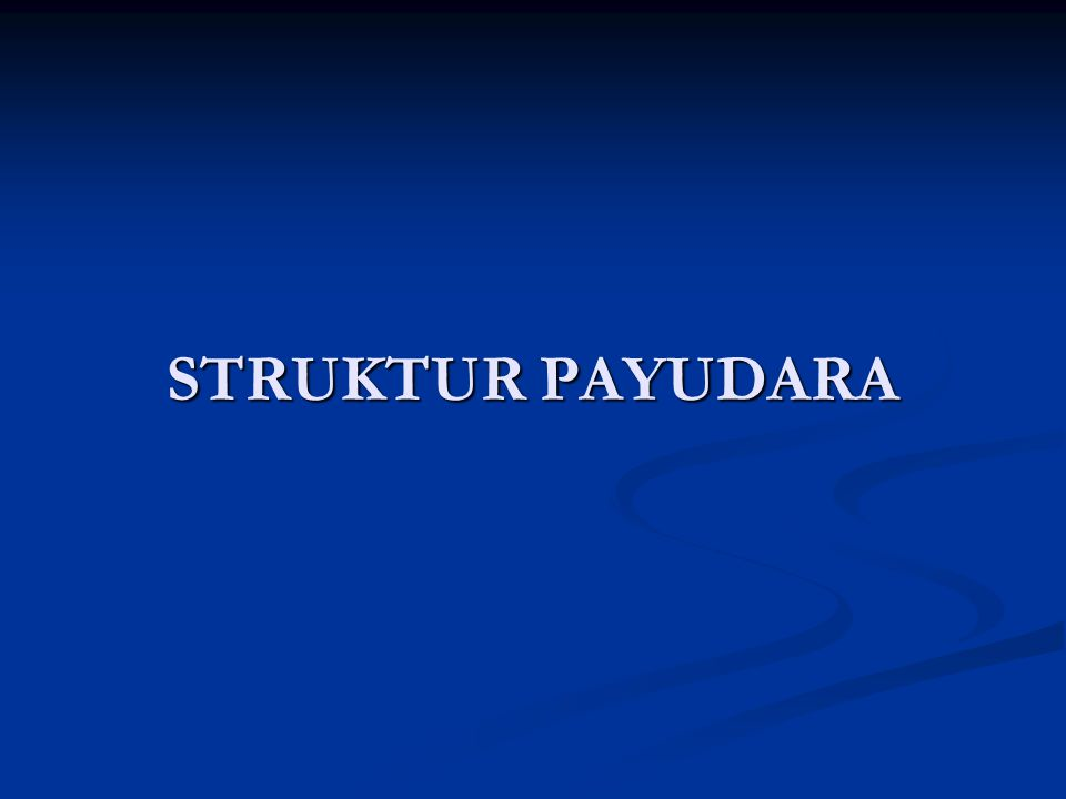 STRUKTUR PAYUDARA