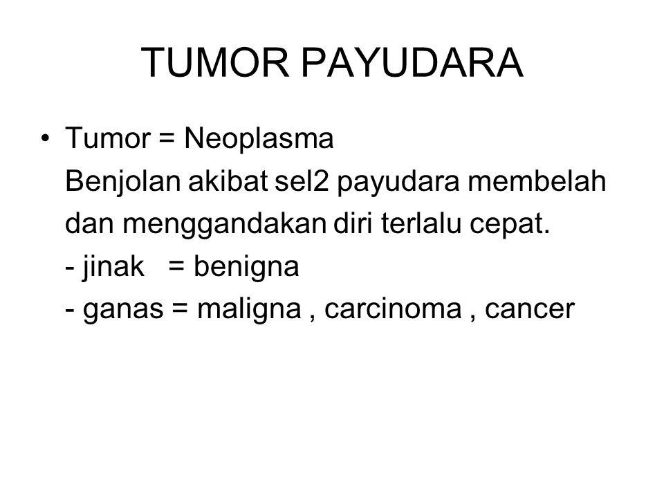 TUMOR PAYUDARA Tumor = Neoplasma Benjolan akibat sel2 payudara membelah dan menggandakan diri terlalu cepat. - jinak = benigna - ganas = maligna, carc