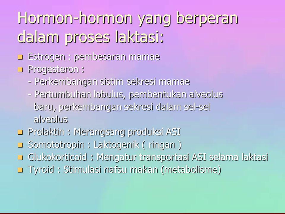 Hormon-hormon yang berperan dalam proses laktasi: Estrogen : pembesaran mamae Estrogen : pembesaran mamae Progesteron : Progesteron : - Perkembangan s