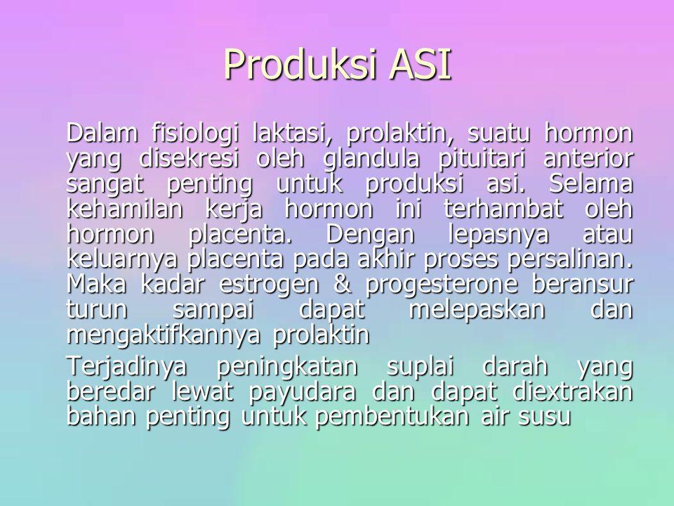 Produksi ASI Dalam fisiologi laktasi, prolaktin, suatu hormon yang disekresi oleh glandula pituitari anterior sangat penting untuk produksi asi. Selam