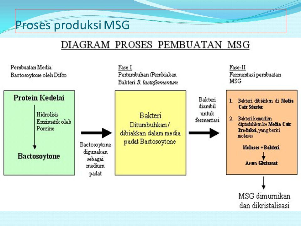Proses produksi MSG