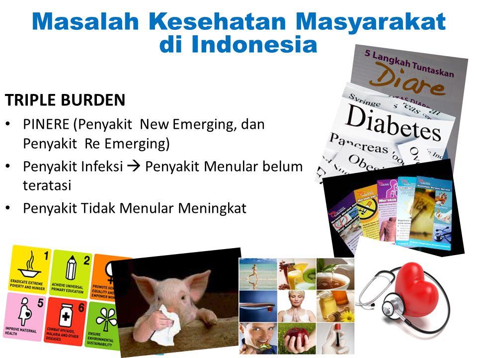 Masalah Kesehatan Masyarakat di Indonesia TRIPLE BURDEN PINERE (Penyakit New Emerging, dan Penyakit Re Emerging) Penyakit Infeksi  Penyakit Menular b