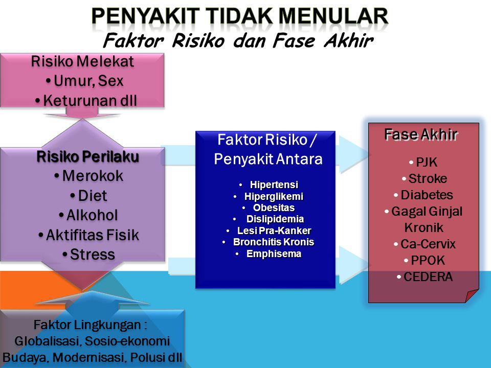 PJK Stroke Diabetes Gagal Ginjal Kronik Ca-Cervix PPOK CEDERA Fase Akhir Faktor Risiko / Penyakit Antara Faktor Risiko / Penyakit Antara HipertensiHip