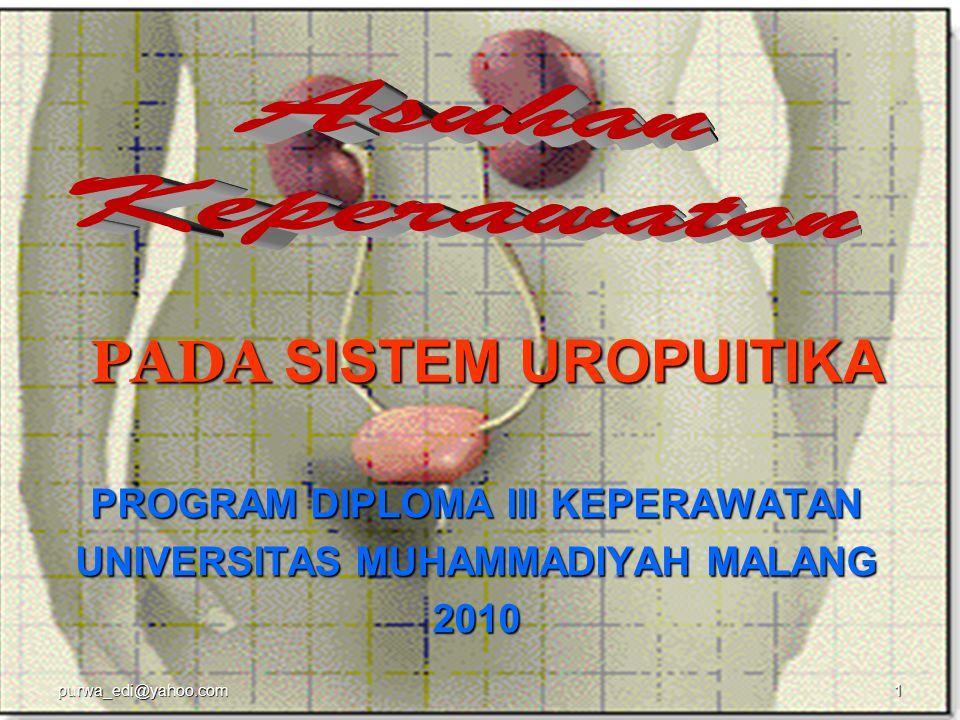 Tujuan Pembelajaran 1.Review anatomi fisiologi sistem uropuitika 2.Pemeriksaan sistem uropuitika (anamnesis  px.