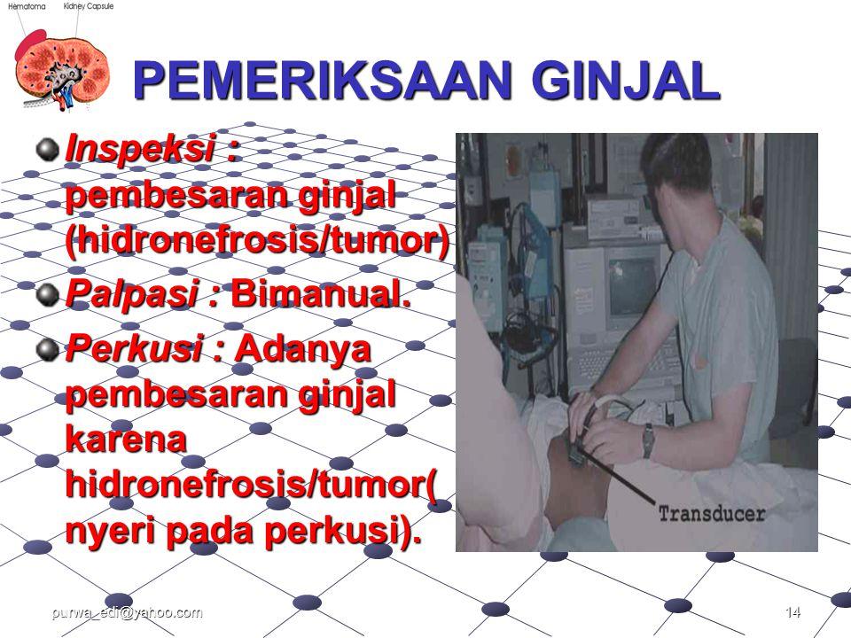 PEMERIKSAAN GINJAL Inspeksi : pembesaran ginjal (hidronefrosis/tumor) Palpasi : Bimanual. Perkusi : Adanya pembesaran ginjal karena hidronefrosis/tumo
