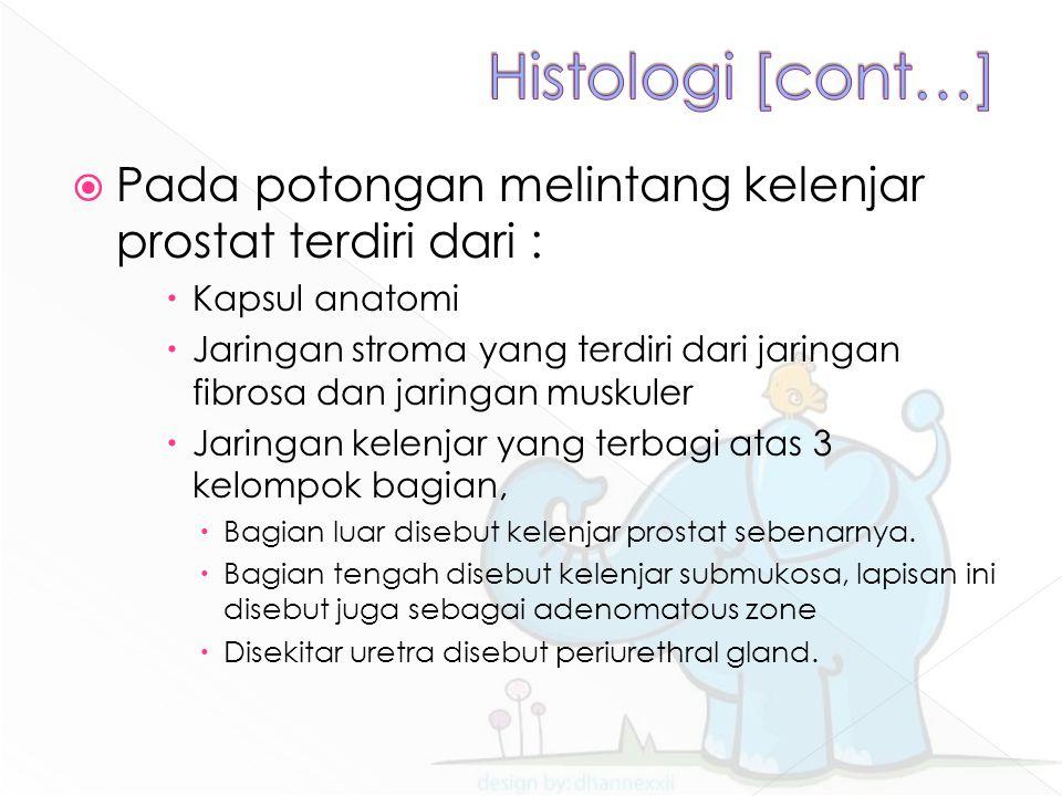  Pada potongan melintang kelenjar prostat terdiri dari :  Kapsul anatomi  Jaringan stroma yang terdiri dari jaringan fibrosa dan jaringan muskuler  Jaringan kelenjar yang terbagi atas 3 kelompok bagian,  Bagian luar disebut kelenjar prostat sebenarnya.