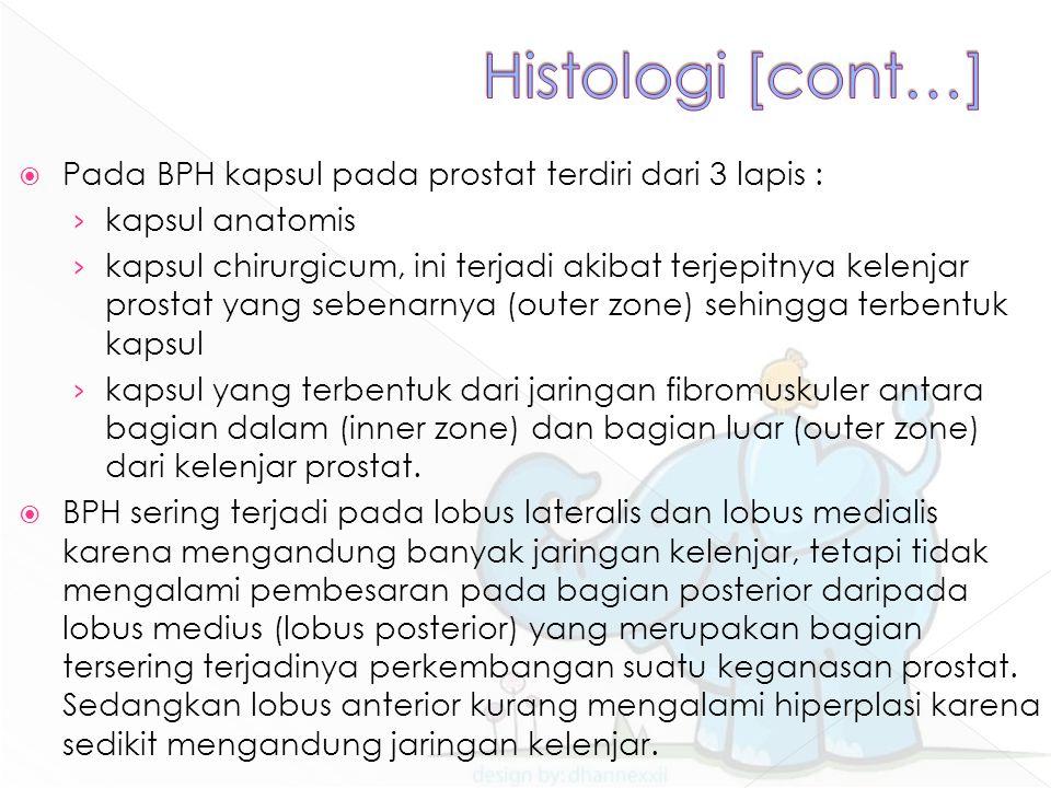  Pada BPH kapsul pada prostat terdiri dari 3 lapis : › kapsul anatomis › kapsul chirurgicum, ini terjadi akibat terjepitnya kelenjar prostat yang sebenarnya (outer zone) sehingga terbentuk kapsul › kapsul yang terbentuk dari jaringan fibromuskuler antara bagian dalam (inner zone) dan bagian luar (outer zone) dari kelenjar prostat.