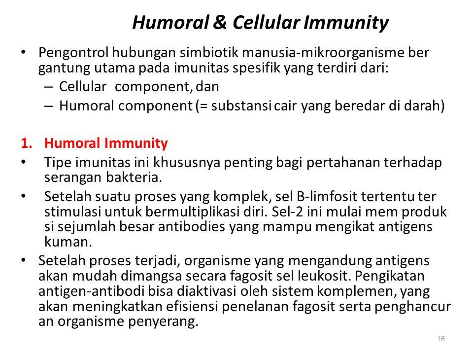 16 Humoral & Cellular Immunity Pengontrol hubungan simbiotik manusia-mikroorganisme ber gantung utama pada imunitas spesifik yang terdiri dari: – Cell