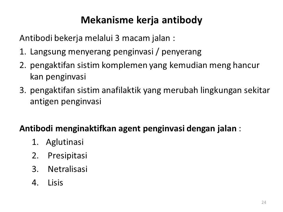 Mekanisme kerja antibody Antibodi bekerja melalui 3 macam jalan : 1.Langsung menyerang penginvasi / penyerang 2.pengaktifan sistim komplemen yang kemu