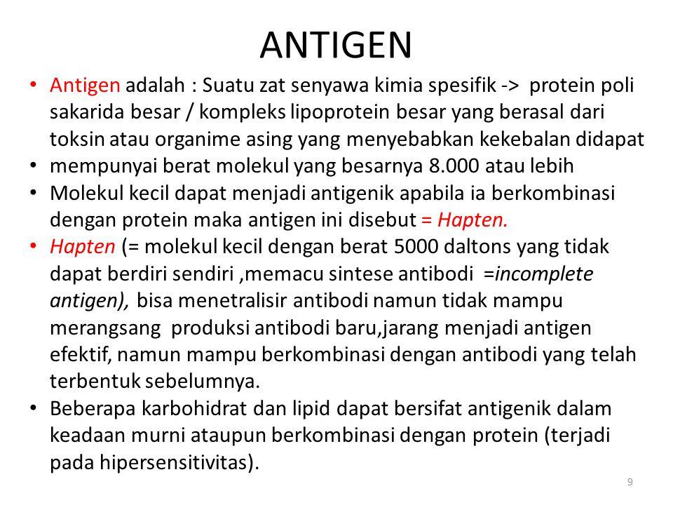 ANTIGEN 9 Antigen adalah : Suatu zat senyawa kimia spesifik -> protein poli sakarida besar / kompleks lipoprotein besar yang berasal dari toksin atau
