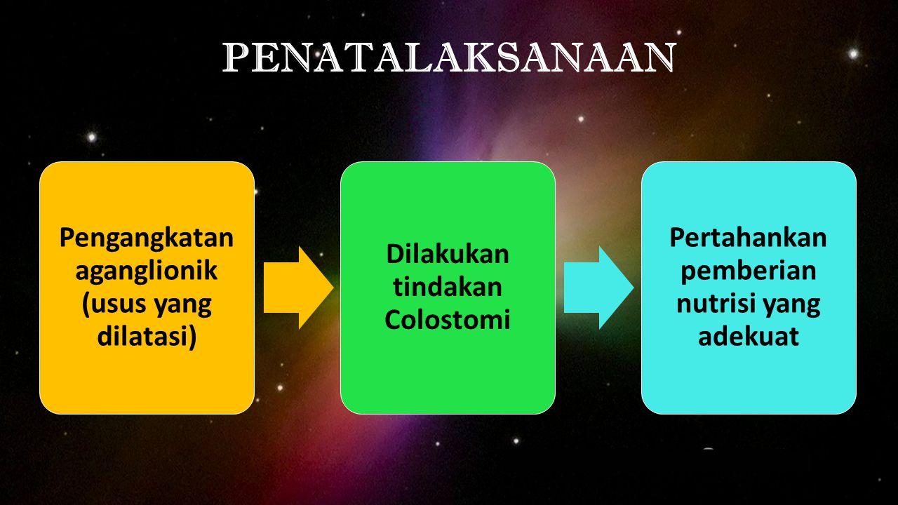 PENATALAKSANAAN Pengangkatan aganglionik (usus yang dilatasi) Dilakukan tindakan Colostomi Pertahankan pemberian nutrisi yang adekuat