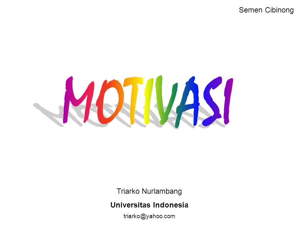 Triarko Nurlambang Universitas Indonesia triarko@yahoo.com Semen Cibinong