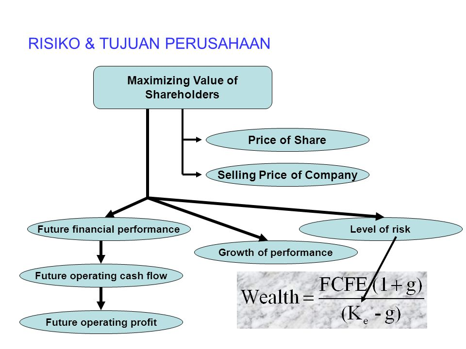 RISIKO & TUJUAN PERUSAHAAN Maximizing Value of Shareholders Price of Share Selling Price of Company Future financial performance Future operating cash