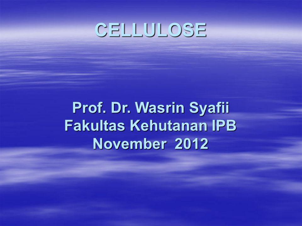 Selobiosa (Cellobiose) Gabungan dua unit glukosa Berikatan dengan ikatan glikosida 1  4 Merupakan unit ulang dari polimer selulosa