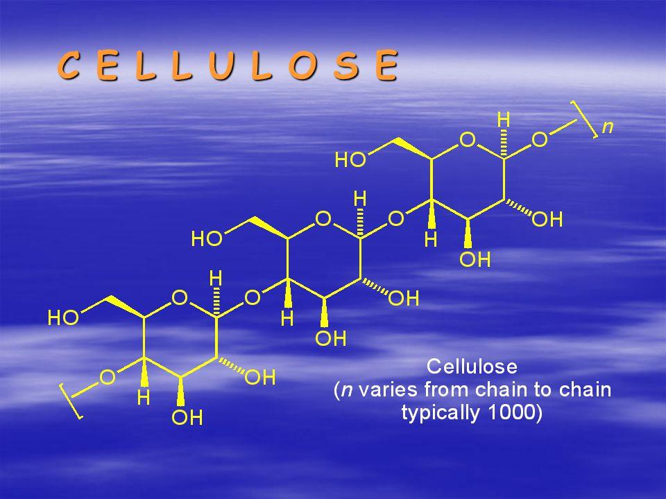 Sifat-sifat selulosa Selulosa tidak larut dalam kebanyakan pelarut Disebabkan : - Sifat kekakuan - Ikatan inter dan intramolekul - Bersifat kristalin Selulosa di alam berada berasosiasi dengan senyawa lain Polimer linier yang panjang DP 1000-15000 (Kayu 5.000-10.000) Selulosa dapat larut dalam larutan tembaga (II) hidroksi beramonia Cuoxam, Cu(NH 3 ) 4 (OH) 2 Selulosa dapat terdegradasi dalam larutan asam kuat (Hidrolisis)