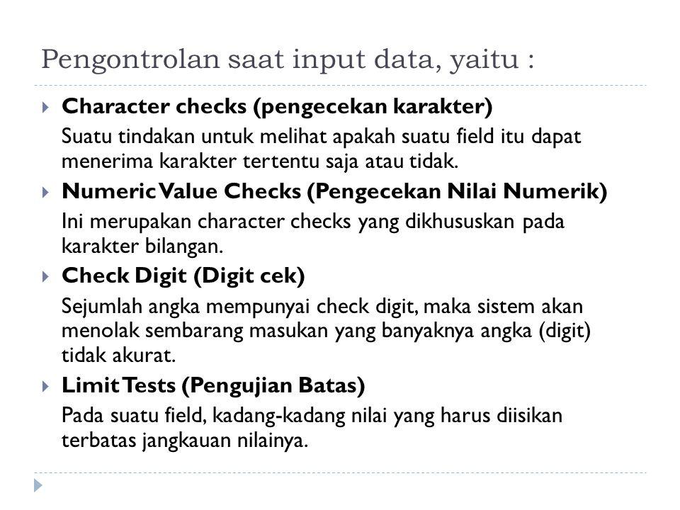 Pengontrolan saat input data, yaitu :  Character checks (pengecekan karakter) Suatu tindakan untuk melihat apakah suatu field itu dapat menerima kara