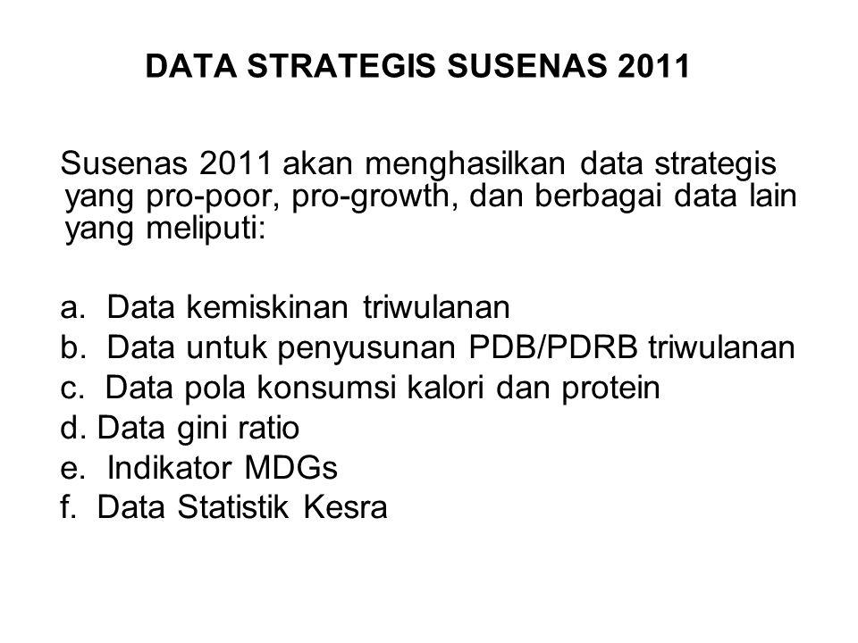 DATA STRATEGIS SUSENAS 2011 Susenas 2011 akan menghasilkan data strategis yang pro-poor, pro-growth, dan berbagai data lain yang meliputi: a. Data kem